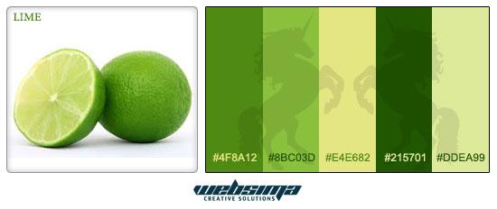ترکیب رنگ لیمو برای طراحی وبسایت