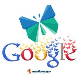 آموزش سئو گوگل