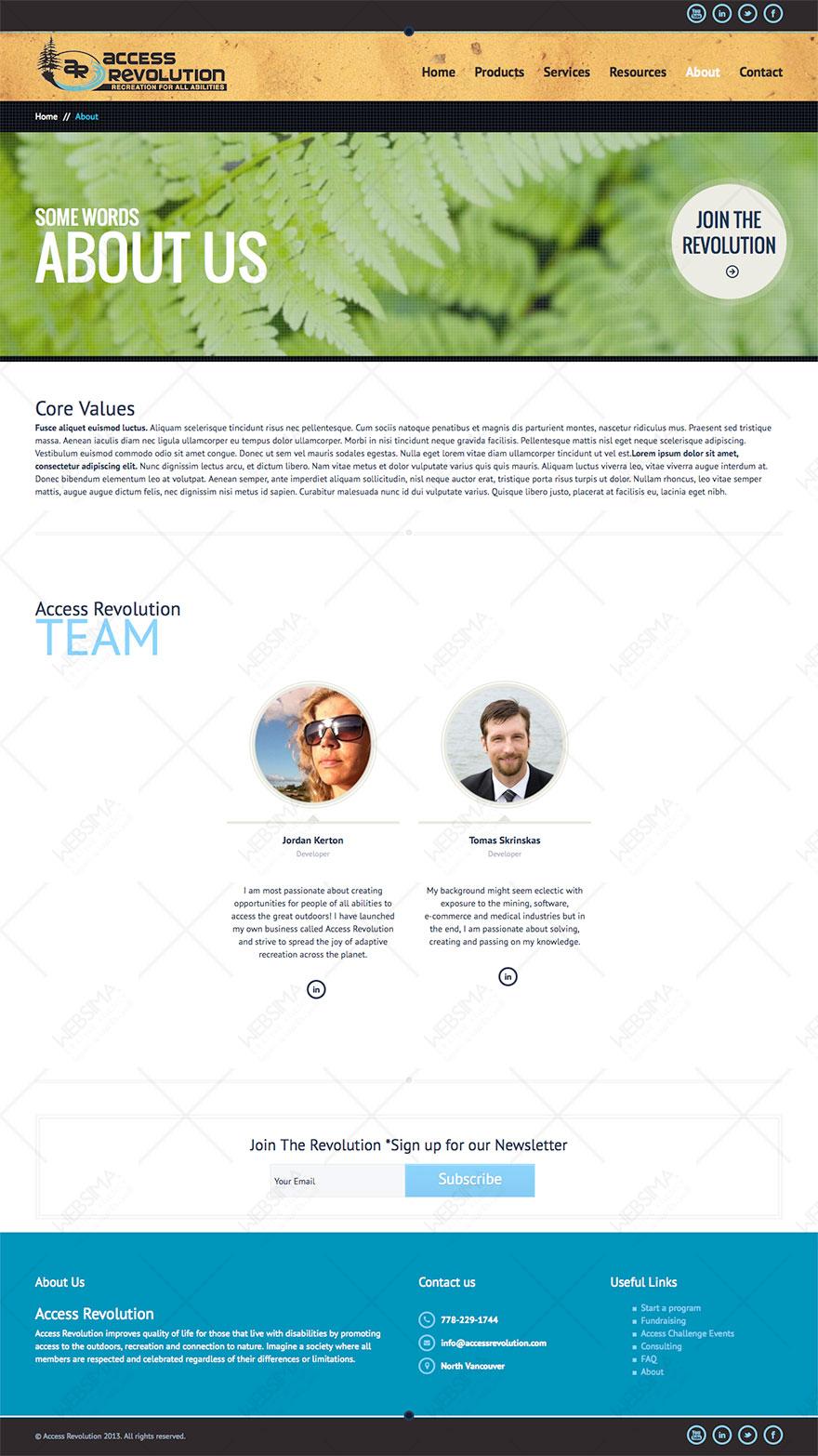 طراحی و سئو وبسایت Access Revolution