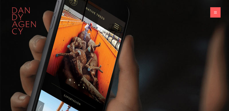 تصاویر HD در طراحی سایت