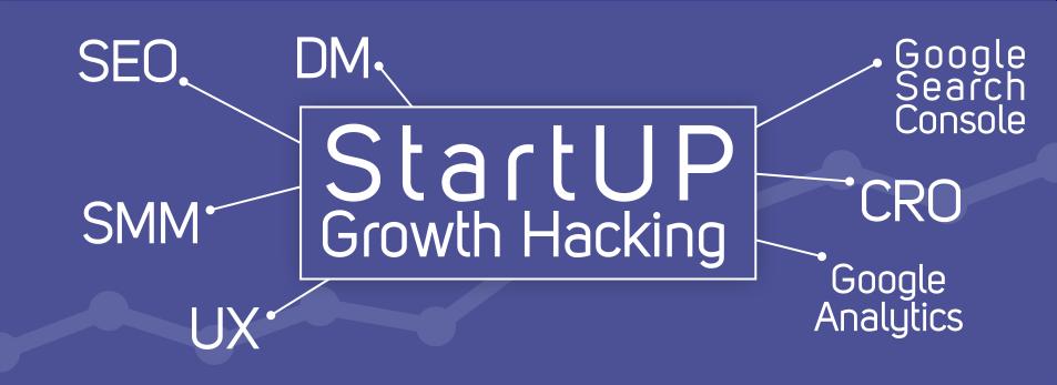 کاربرد سئو و دیجیتال مارکتینگ در هک رشد استارتاپ