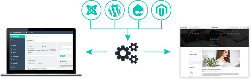 طراحی سایت با CMS اختصاصی بهتر است یا وردپرس؟