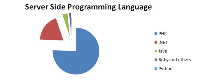 زبان های برنامه نویسی رایج در طراحی سایت