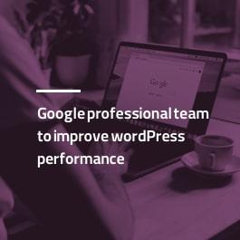 تیم حرفه ای گوگل برای بهبود عملکرد وردپرس