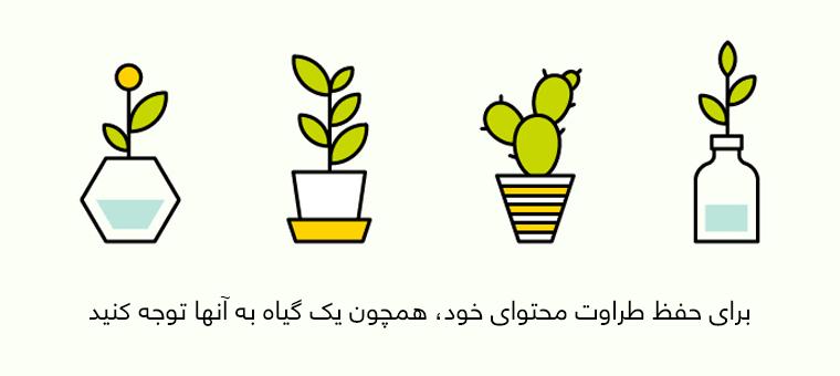 برای حفظ طراوت محتوای خود، همچون یک گیاه به آنها توجه کنید